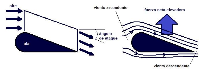 fuerza elevadora en ala del avión y ángulo de ataque